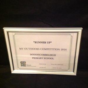 doddi-certificate